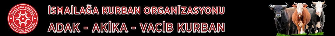 İsmailağa Kurban Organizasyonu